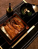 Barbecued eel fillets with soy sauce on rice