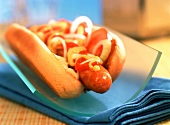 Hot dog with onions, mustard and ketchup