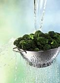 Brokkoli im Sieb waschen