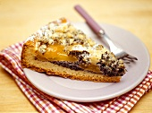 Piece of crumble cake with poppy seeds and apricots