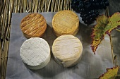Epoisses at four stages of maturity
