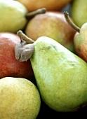 Verschiedene Birnen (Ausschnitt)