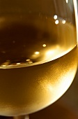 White wine in glass (detail)