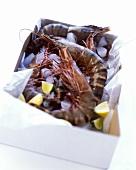 Fresh jumbo prawns with lemon wedges in box
