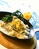 Oyster gratin in pan