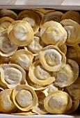 Italian pasta: medaglioni porcini (fresh)