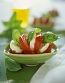 Insalata caprese (Mozzarella mit Tomate & Basilikum)