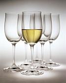 Glas Weisswein vor leeren Weissweingläsern
