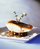 Fried pike-perch on lentils