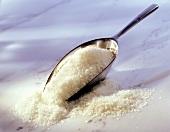 Preserving sugar with metal scoop