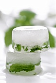 Two ice cubes with herbs