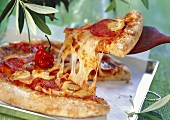 Pizza with peperoni, mushrooms and chili pepper