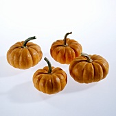 Four pumpkins (Jack be little or Mandarin)