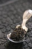 Black tea on spoon