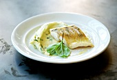 Fish with mashed potato and basil