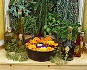 Kräuteröle, Sommerblumen und frische Kräuter am Fenster