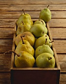 Old pear varieties (Steir. Krummstiel, Kaiserbirne) in crate