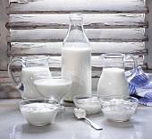 Verschiedene Milchprodukte vor Fensterbalken