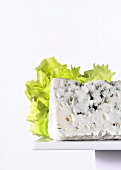 Blue cheese in front of lettuce leaf