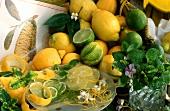 Still life with lemons, limes and lemon balm