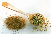 Fennel seed on spoon and ground fennel