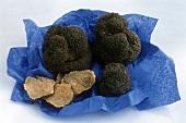 Summer truffles on blue paper
