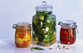 Pickled peppers, gherkins and sweet peppers