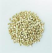 A pile of buckwheat (gluten-free)