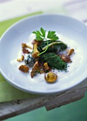 Chard rolls with chanterelles in cream sauce