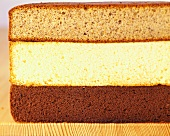 Nut, sponge and chocolate cake bases