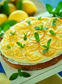 Lemon tart with lemon balm