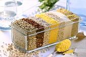 Getreide und -produkte in Glasbehälter