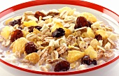 Oat muesli with dried fruit