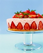 Strawberry flan with strawberry mousse on cake stand