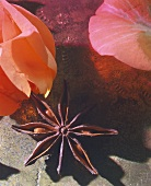 Rose petals and star anise
