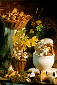 Autumnal still life with forest mushrooms and button mushrooms