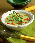 Avocado soup with diced peppers