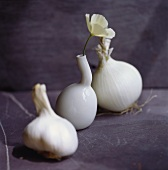 Still life with garlic, white onion and flower vase