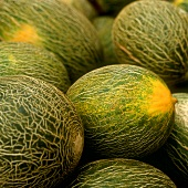 Netted melon