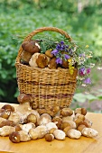 Fresh ceps with basket and meadow flowers