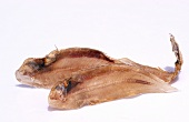 Dried fish from Thailand