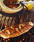 Barbecued sea bream on grill rack
