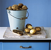 Organic potatoes in bucket and on chopping board; brush; knife