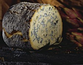 Fourme d'Ambert (blue cheese from Auvergne)