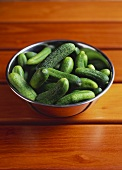 Fresh pickling cucumbers in metal bowl