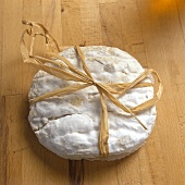 Pagliettina - an Italian soft cheese