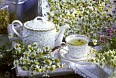 Camomile tea in a cup, teapot, fresh camomile flowers