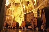 Wine barrels in cellar (Chateau Romanin St. Remy)