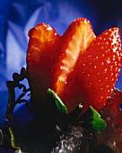 Fresh Strawberries in a Circle