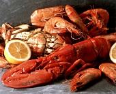 Hummer, Garnelen und Krabben, gekocht